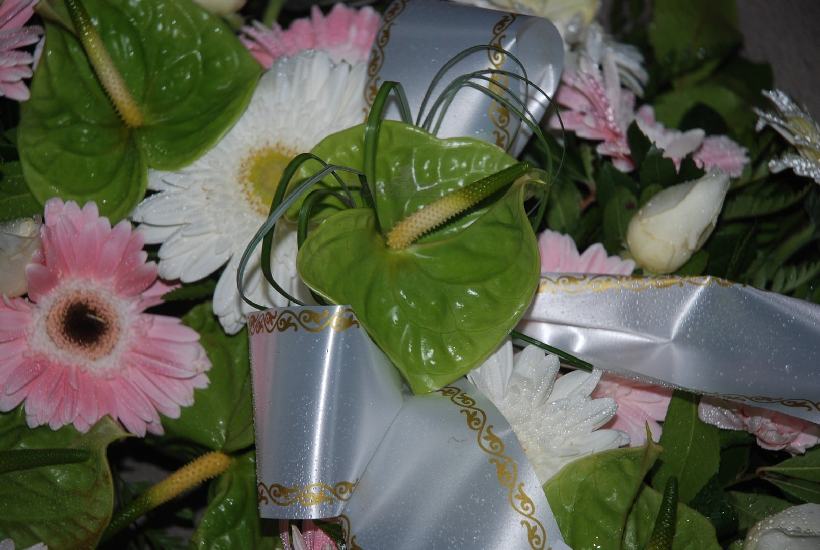 Coroa Funeral M