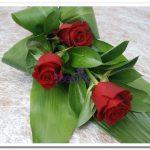 Caixa de Rosas2