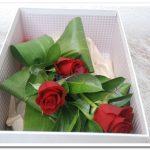 Caixa de Rosas4