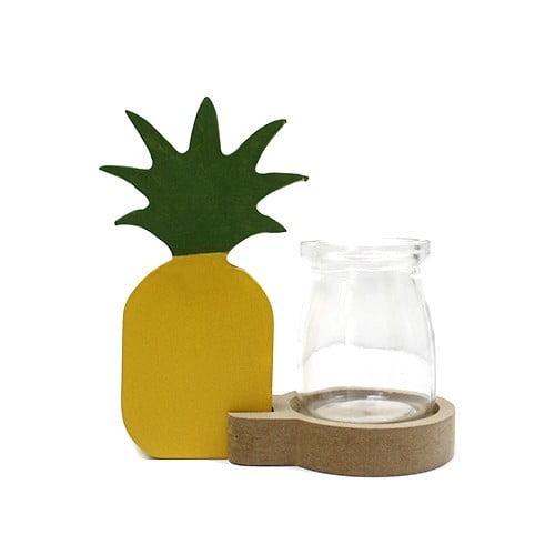 Decoração hidropónica para casa – Abacaxi